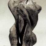 sculpture cep de vigne